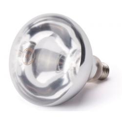 Ampoule pour lampe chauffe plat/frites